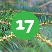 als_weihnachtskalender_ziffer17