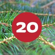 als_weihnachtskalender_ziffer20
