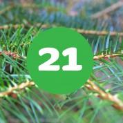 als_weihnachtskalender_ziffer21