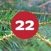als_weihnachtskalender_ziffer22