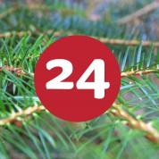 als_weihnachtskalender_ziffer24